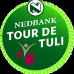 logo-tdt-png-02